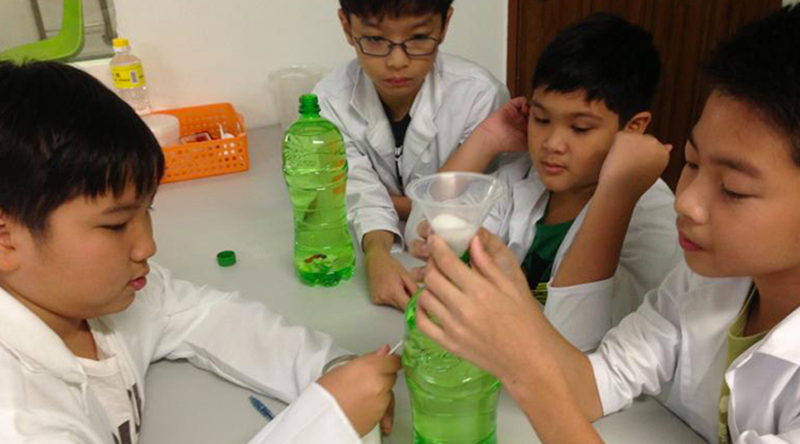 pri school science tuition